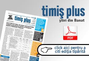 TimisPlus online